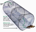 Pied Piper Fish Trap 502