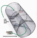Pied Piper Barrel Perch Trap