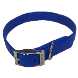 Single Layer Nylon Puppy Collar