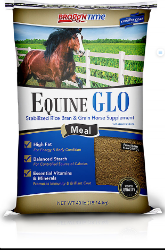Bragg'N Time Equine GLO