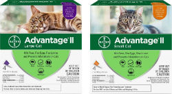 Advantage® II for cats - Coastal Ag Supply