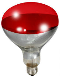 Little Giant® Heat Lamp Bulb