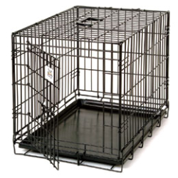 Pet Lodge™ Wire Pet Crate