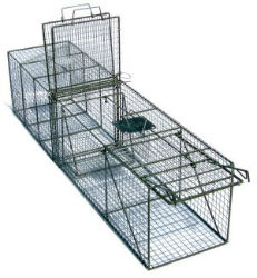 Pied Piper Transfer Trap with Rear Guillotine Door - Coastal Ag supply