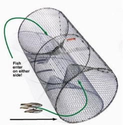 Pied Piper Barrel Perch Trap - Coastal Ag Supply